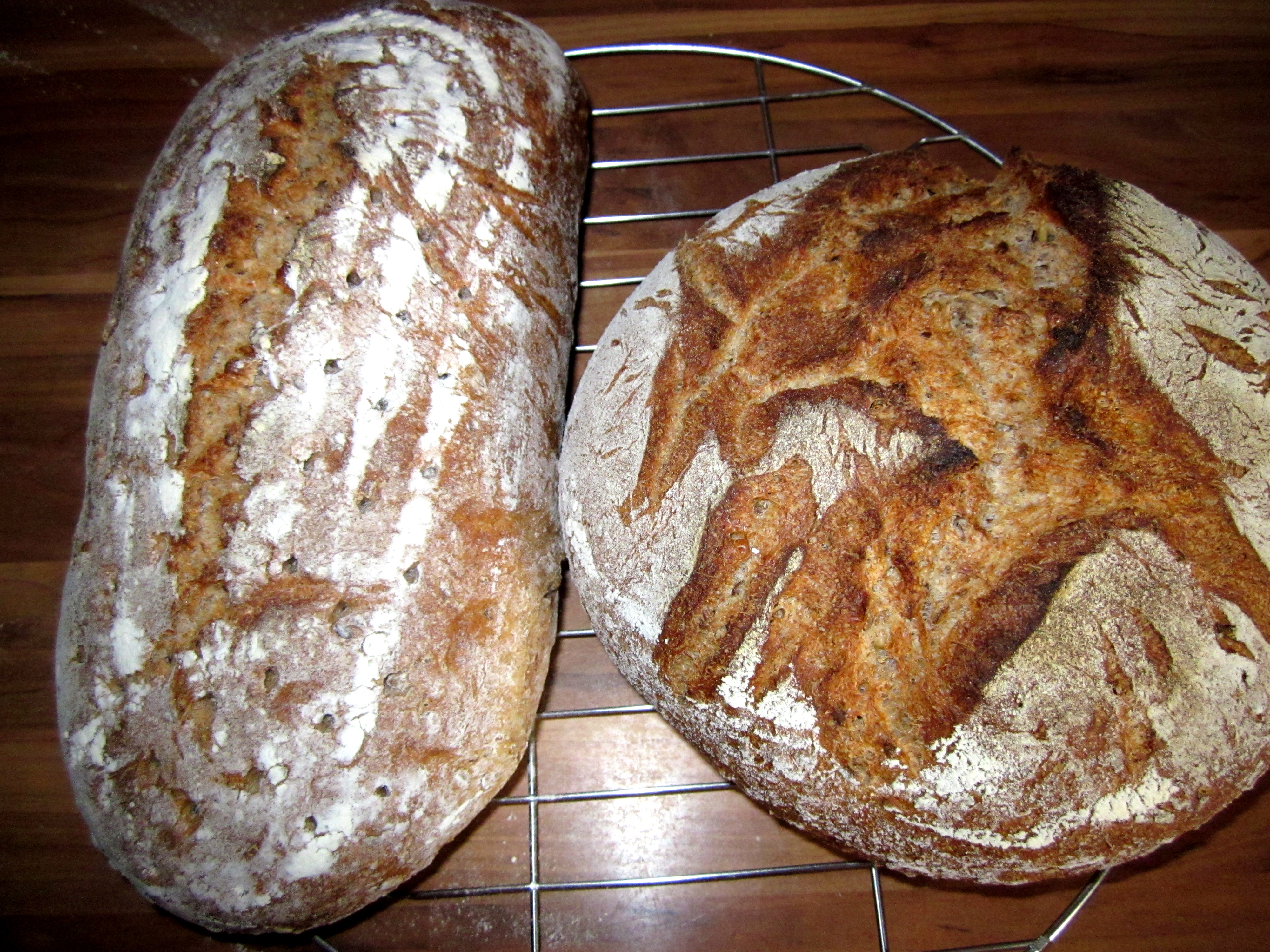 Das Rumford-Brot