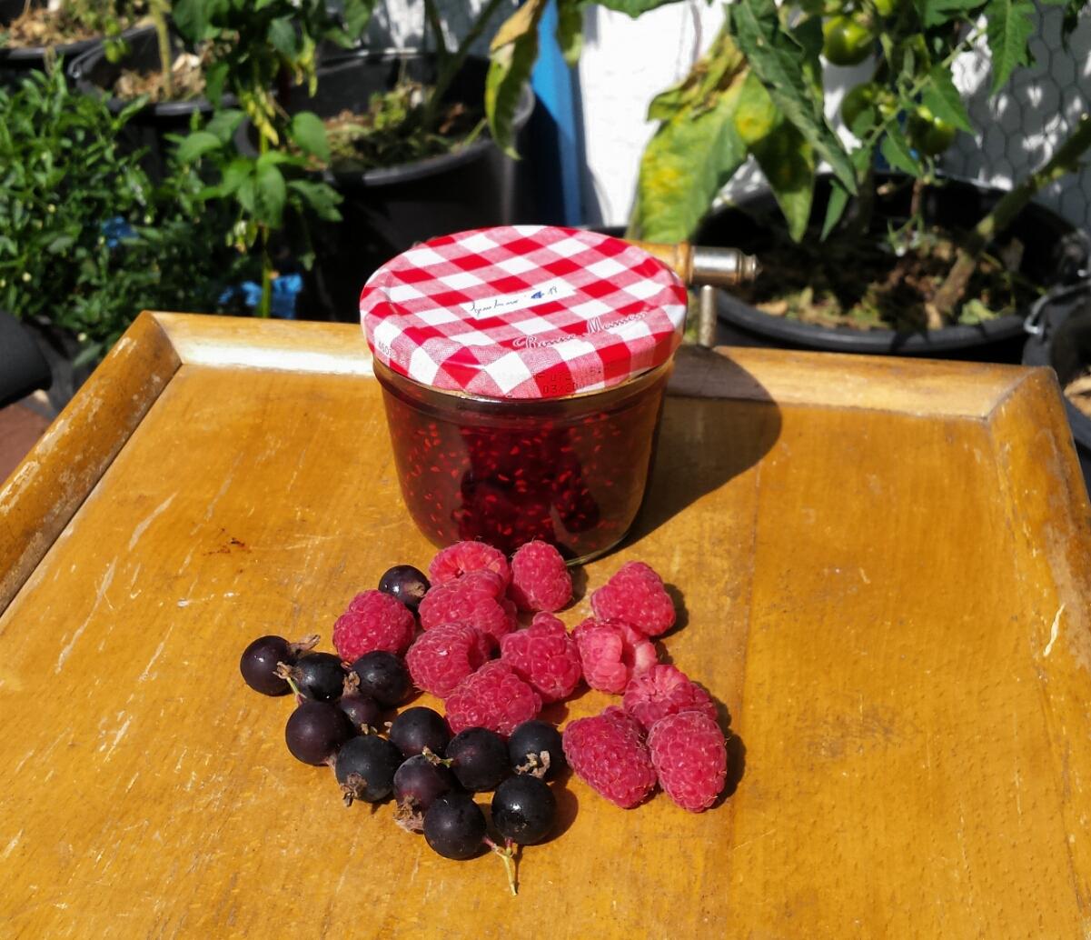 Jostabeeren Himbeeren Marmelade